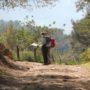 Les randonnées & balades