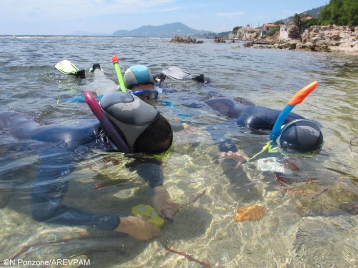 espace mer sentier sous marin archéologique d'olbia