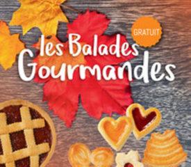 Balabes gourmandes autour du coudon