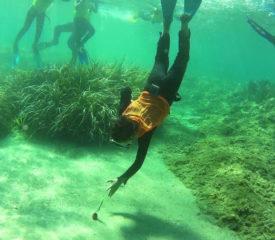 Sauveteur des mers avec Blue Addiction à La Londe les Maures