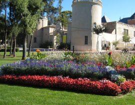 Massif floral parc du château